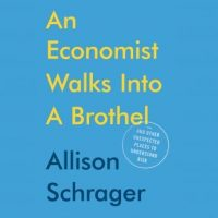 an-economist-walks-into-a-brothel-and-other-unexpected-places-to-understand-risk.jpg