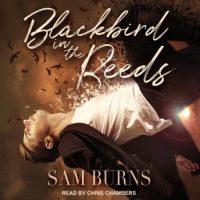 blackbird-in-the-reeds.jpg