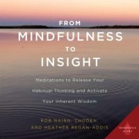 from-mindfulness-to-insight-meditations-to-release-your-habitual-thinking-and-activate-your-inherent-wisdom.jpg