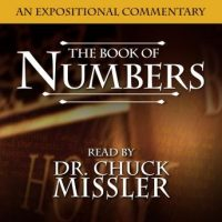 numbers-an-expositional-commentary.jpg