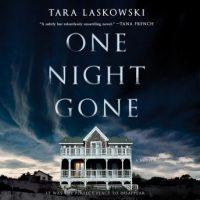 one-night-gone-a-novel.jpg