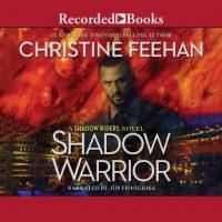 shadow-warrior.jpg