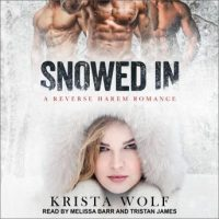 snowed-in-a-reverse-harem-romance.jpg