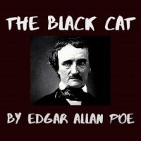 the-black-cat.jpg