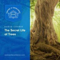 the-secret-life-of-trees.jpg