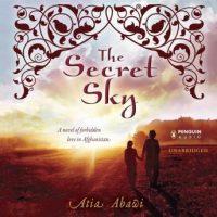 the-secret-sky.jpg