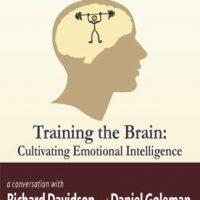 training-the-brain-cultivating-emotional-skills.jpg