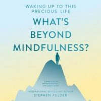 whats-beyond-mindfulness-waking-up-to-this-precious-life.jpg