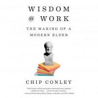 wisdom-at-work-the-making-of-a-modern-elder.jpg